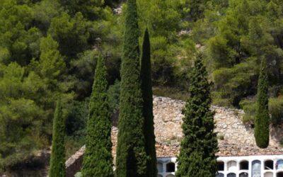 Ayuntamiento de Teruel | Oficial de Cementerio | Fecha de examen